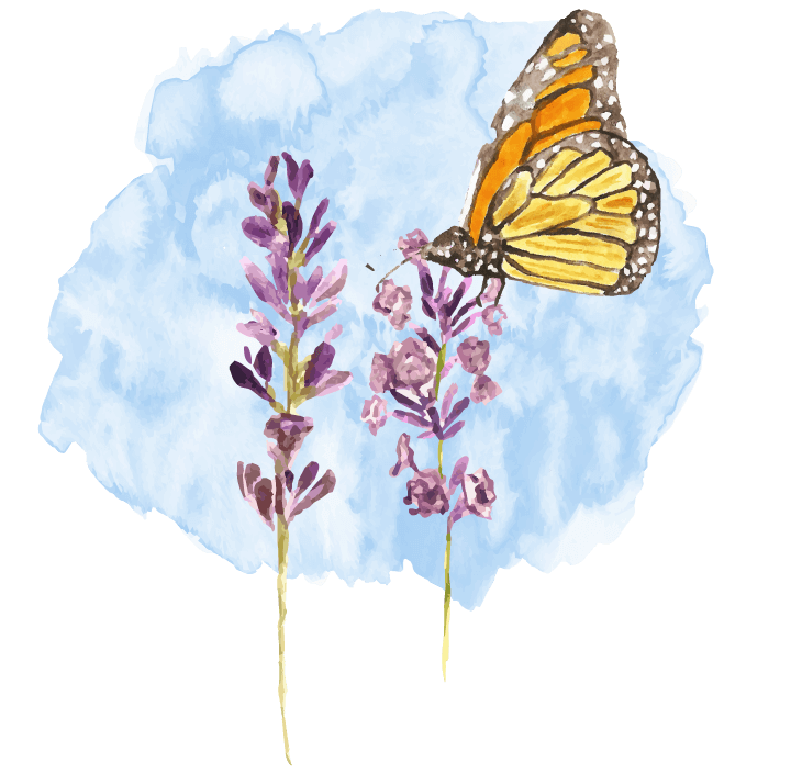 Monarch Counseling Group - Logo Only
